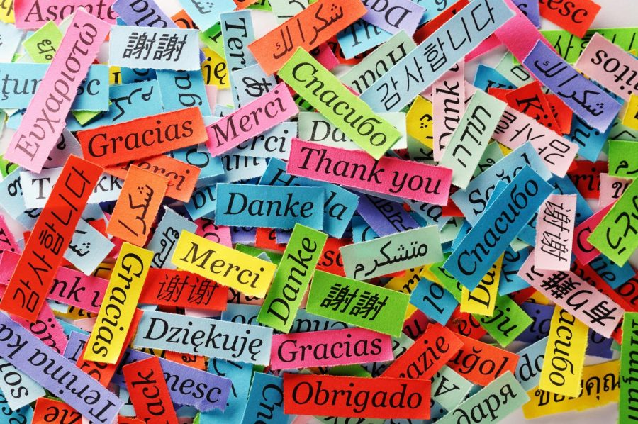 New Language: Unlocked Tips on How to Learn a New Language!